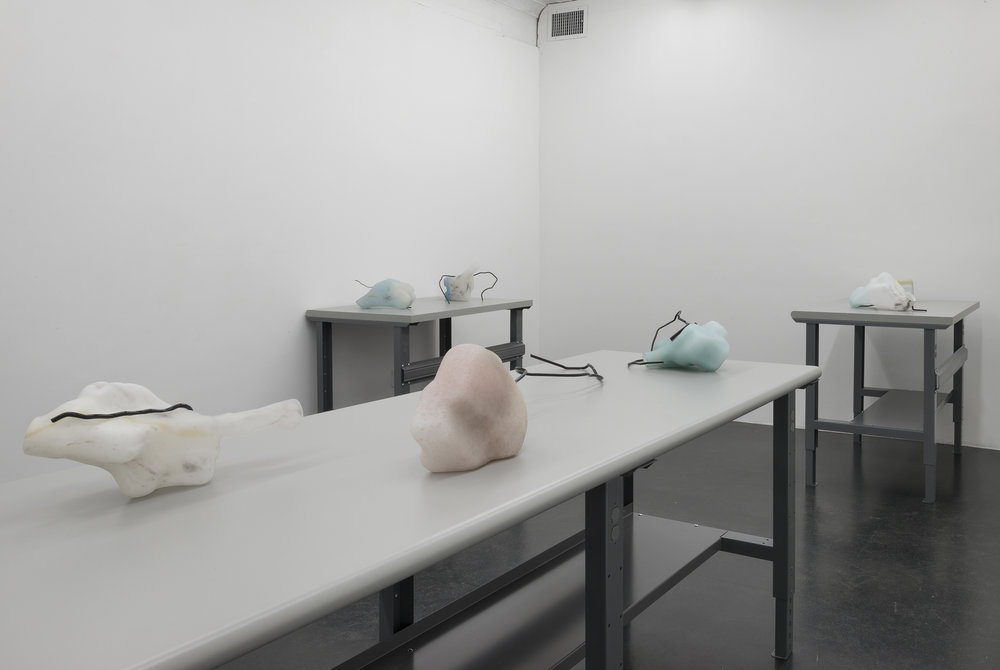 Valerie Snobeck,  Reservoirs,  Essex Street, NY, 2015, exhibition view
