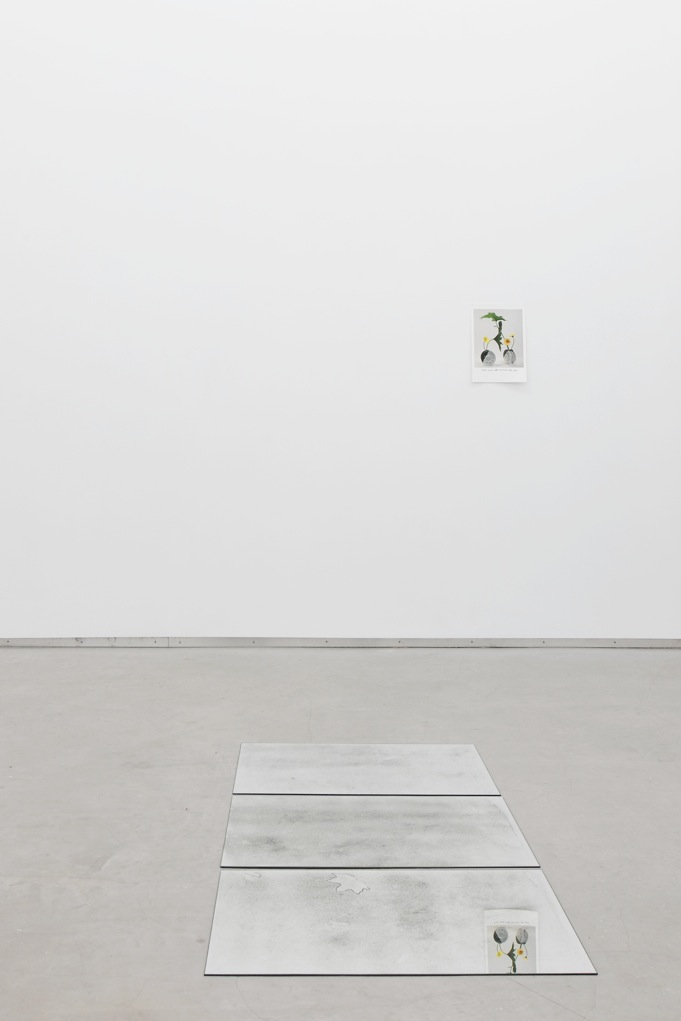 Constellation of Forms and Processes , Catherine Bastide gallery, Brussels, 2012, exhibition view