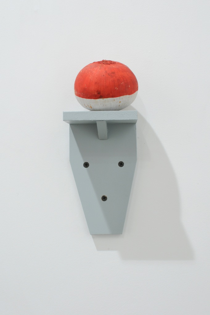 Polis or the Garden or Human Nature in Action (Belgian version) , 2012, painted onions on wood shelves