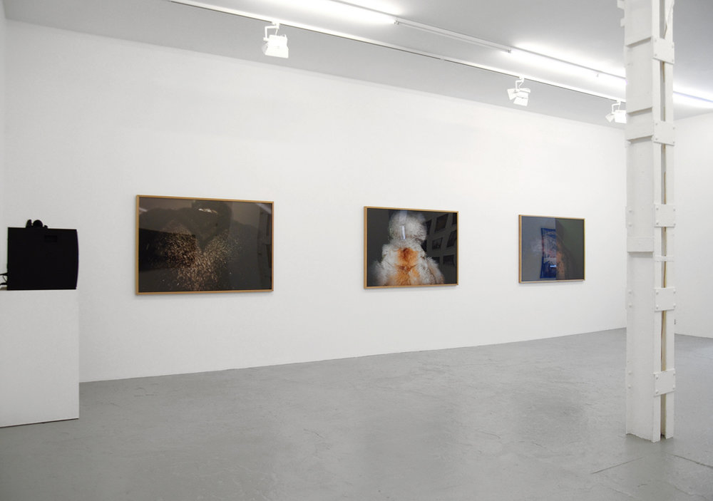 Olga Chernysheva, I nvolutions , Catherine Bastide gallery, Brussels 2007, exhibition view