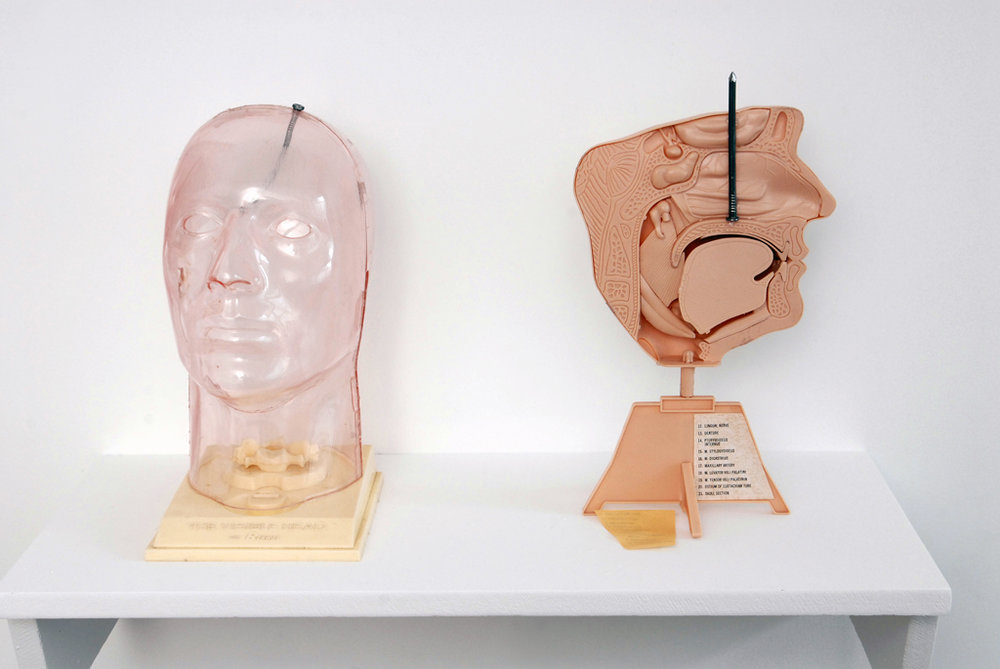 David Colossi, Annals of roentgenology Vol · XXII, Catherine Bastide gallery, Brussels, 2007, exhibition view