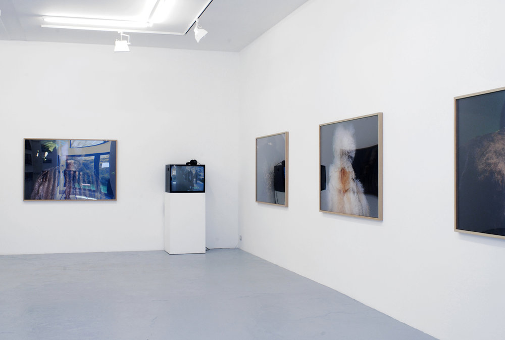 Olga Chernysheva , Involutions,  Catherine Bastide gallery, Brussels, 2007, exhibition view