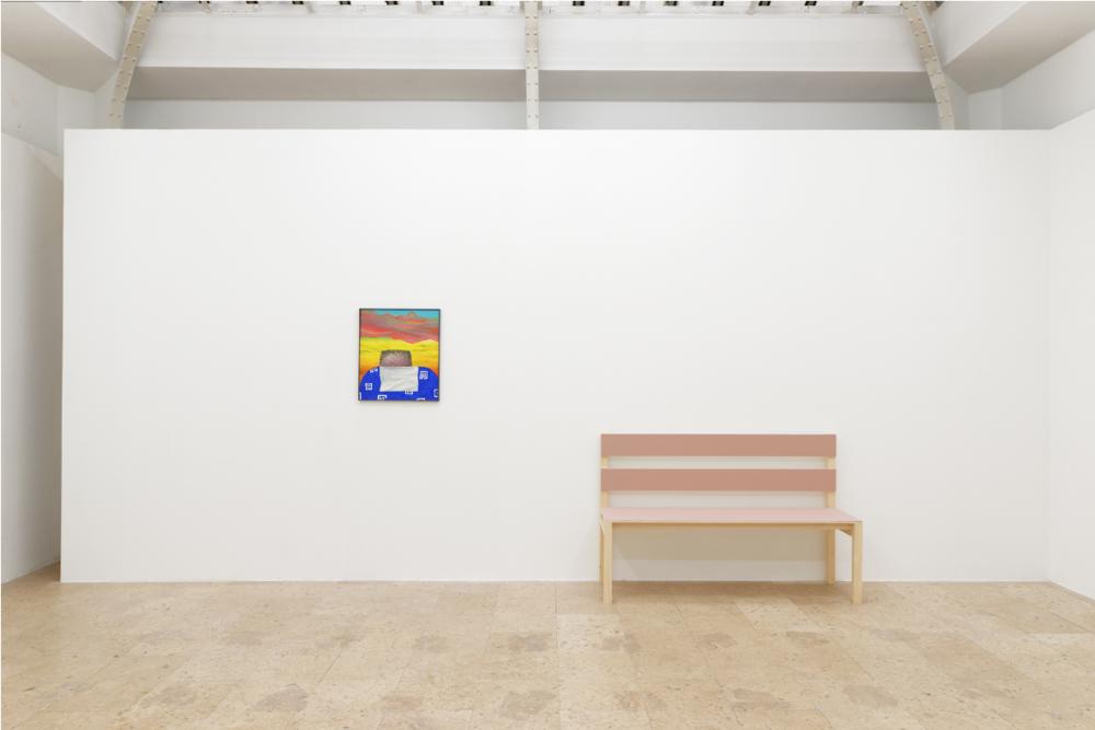 Gijs Milius,  Facts and Life,  Gaudel de Stampa, Paris, 2017, exhibition views