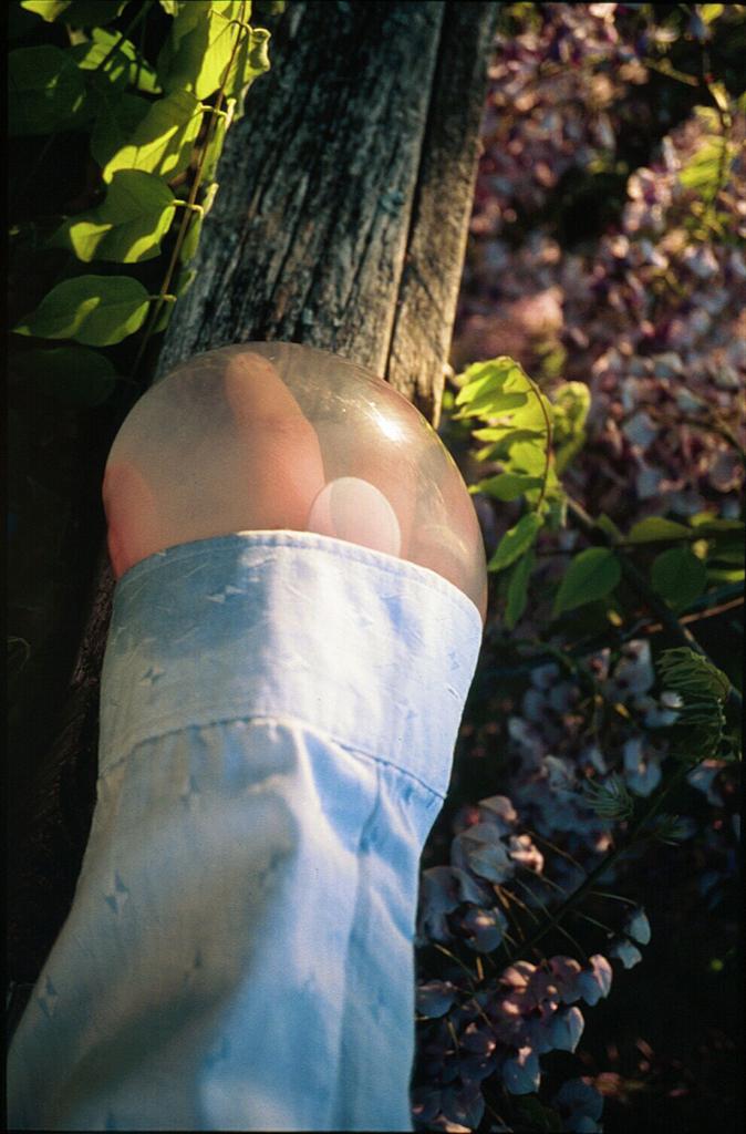 Janaina Tschäpe,  Flowers , 2000