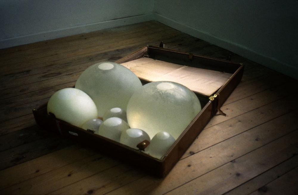 Janaina Tschäpe, Suitcase, 2000