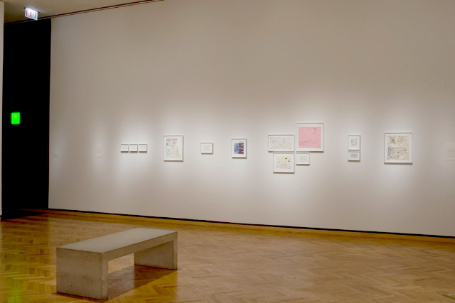 Drawing, Dreaming, Drowning,  Art Institute of Chicago, 2008, installation view