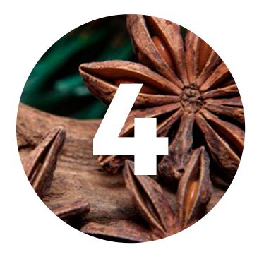 ANÍS ESTRELLADO - Originario de China, este ingrediente fue incorporado a nuestra receta para equilibrar la amargura de nuestros primeros botánicos a la dulzura oculta a ser descobierta.