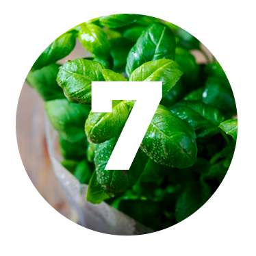 ALBAHACA - Incluimos albahaca a nuestra receta para redondear el ligero calor de la pimienta rosa.