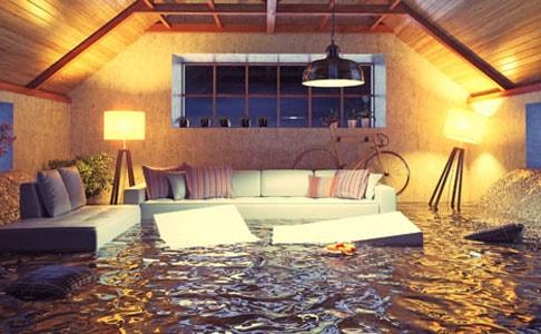 486 flood-min.jpg