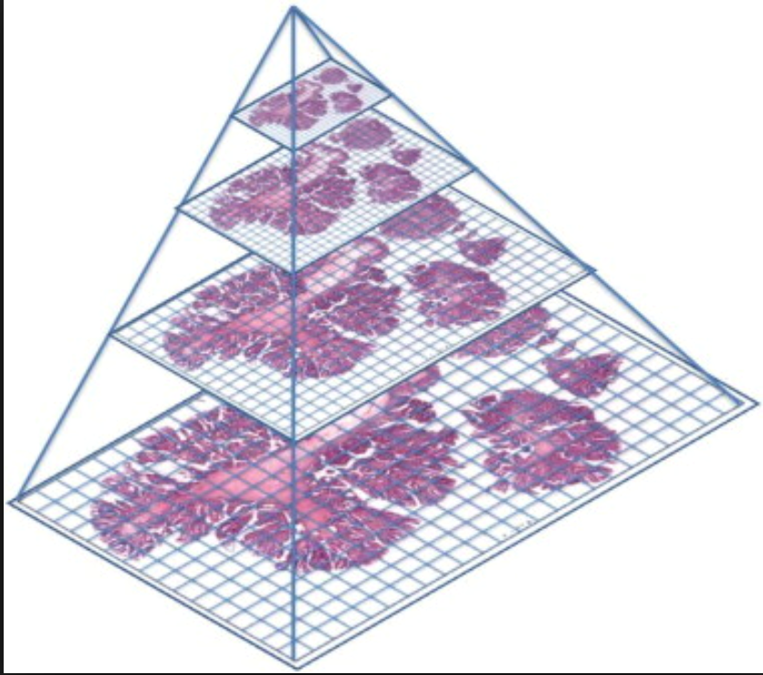 Figure 2. The Pyramid Image Rendering schema of pathology whole slide images.