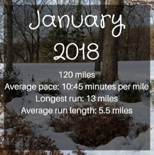 January Mileage Instagram Stories.jpg