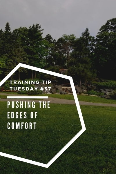 Training Tips Tuesday 37 Pushing the Edges of Comfort Pinterest.jpg