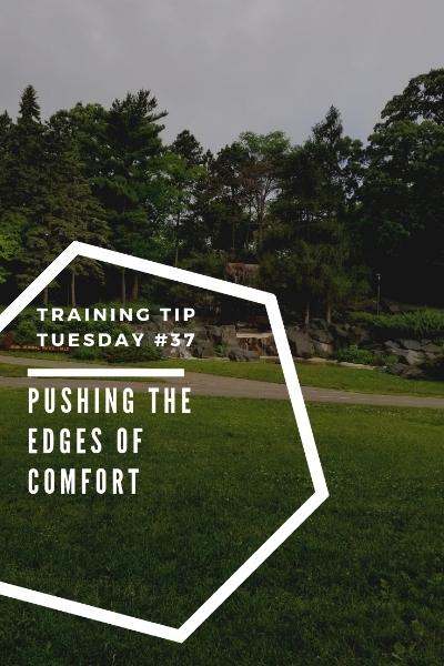 Training Tips Tuesday 37 Pushing the Edges of Comfort Pinterest.jpg