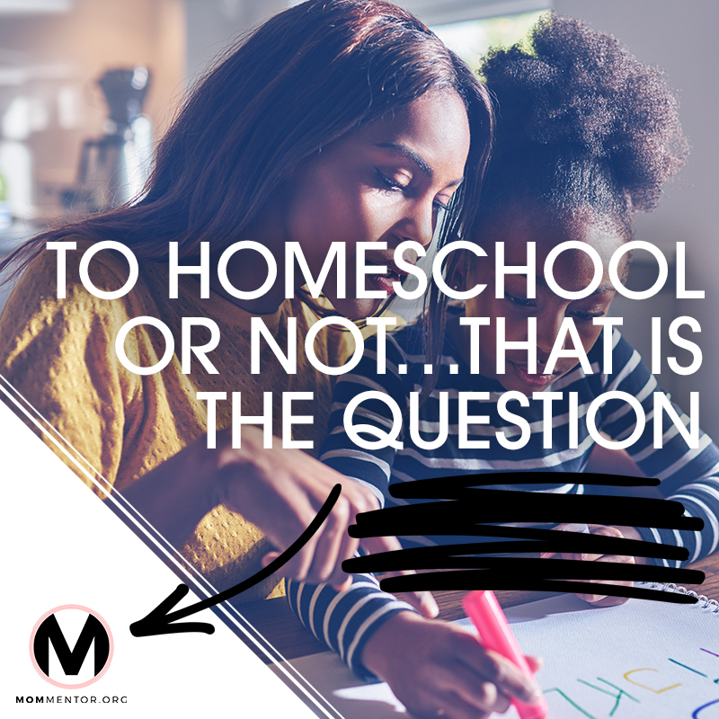 TO HOMESCHOOL OR NOT 800x800.jpg