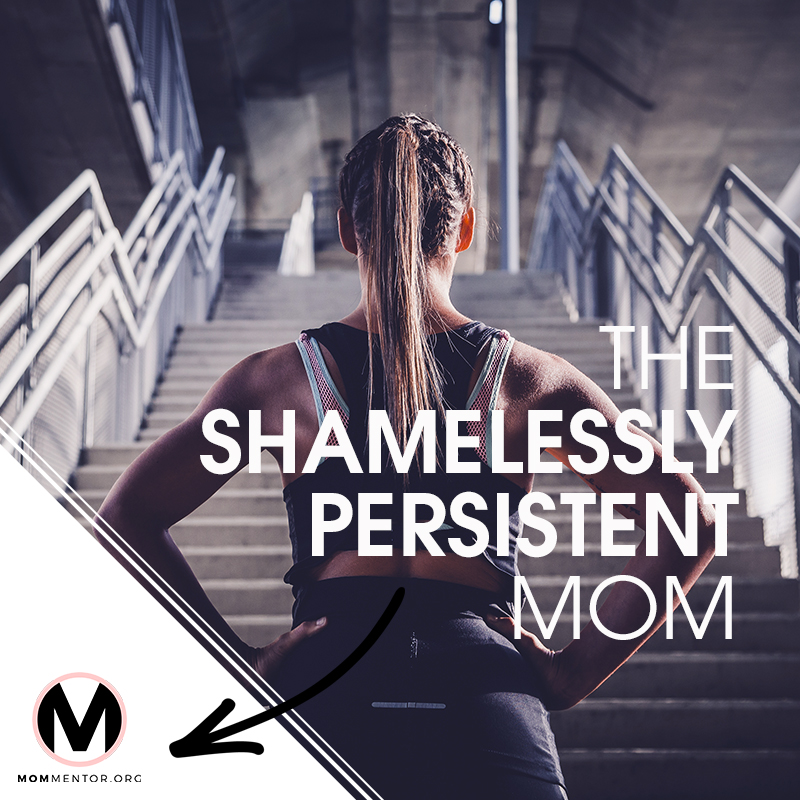 The Shamelessly Persistent Mom Cover Page Image 800x800 PINTEREST.jpg