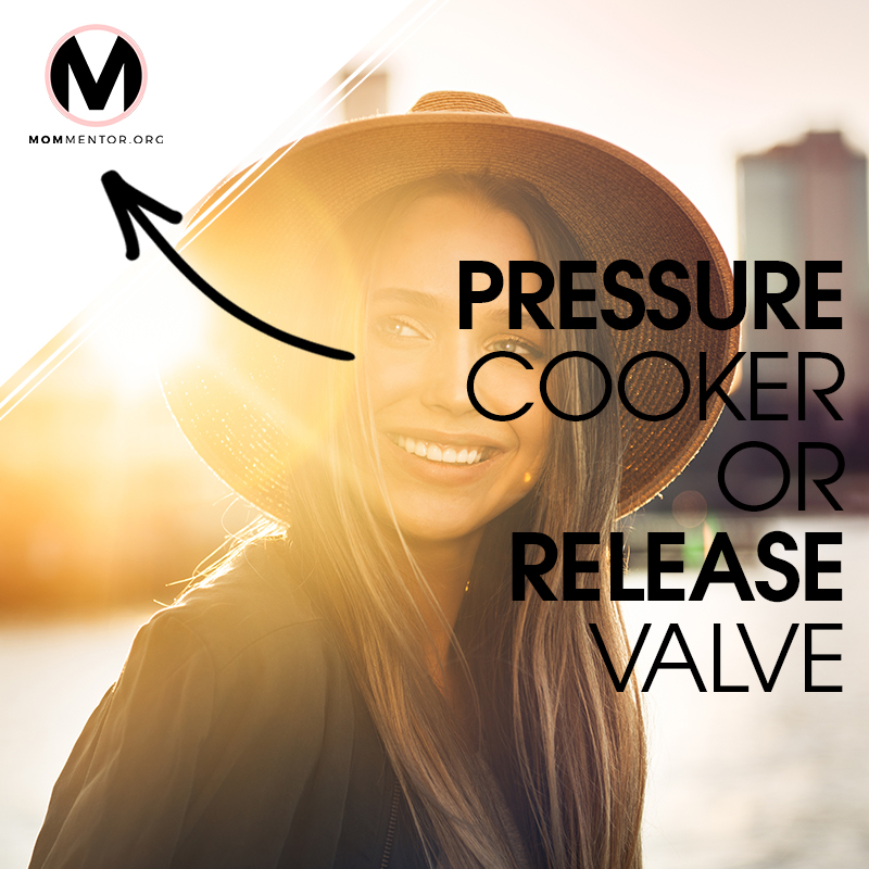 Pressure Cooker or Release Valve Cover Page Image 800x800 PINTEREST.jpg