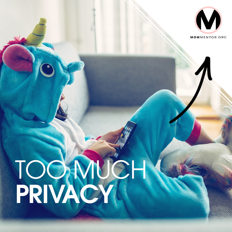 Too Much Privacy Cover Page Image 800x800 PINTEREST.jpg