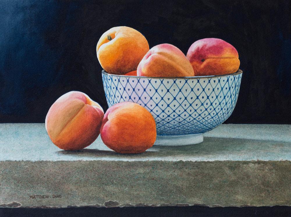Stone Fruit Study