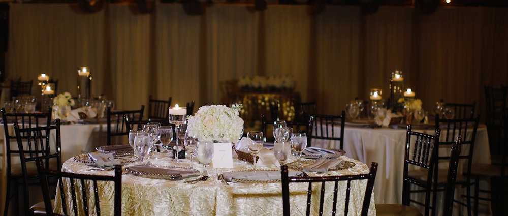 Villa-Luna-Wedding-Reception-Video.jpeg