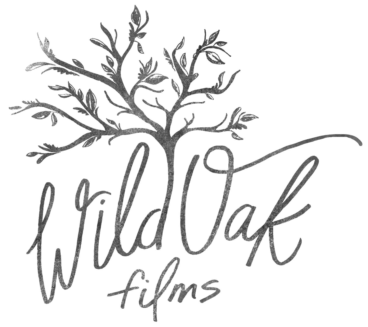 Wichita Wedding Videography // Wild Oak Films
