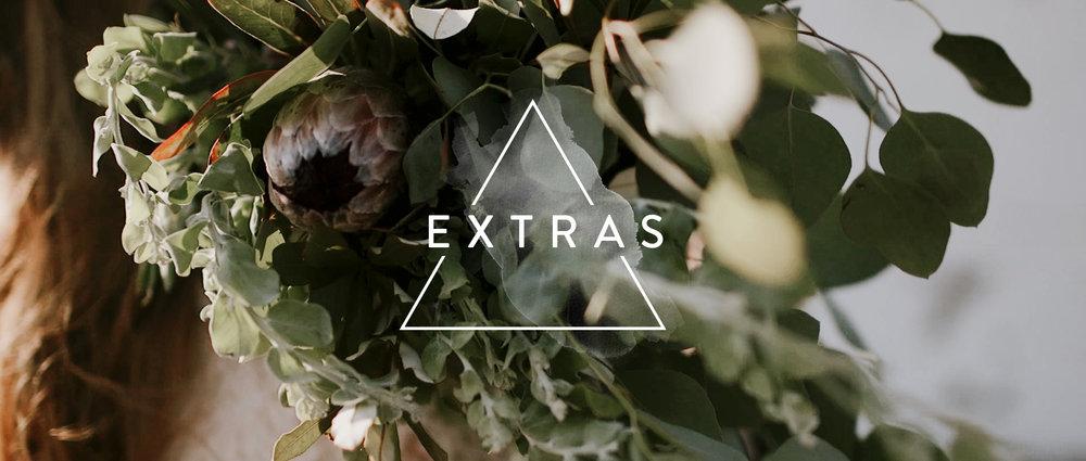 the-extras.jpg