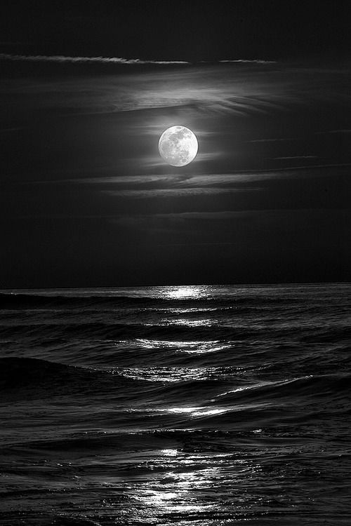 24620fa0e19795d9b4bc7edeed9dd403--black-sea-black-moon.jpg