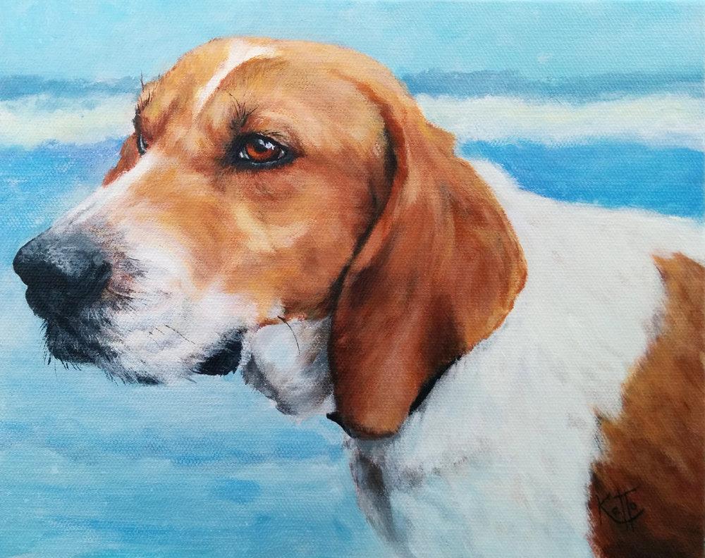 """Otis (the treeing walker coonhound)"""