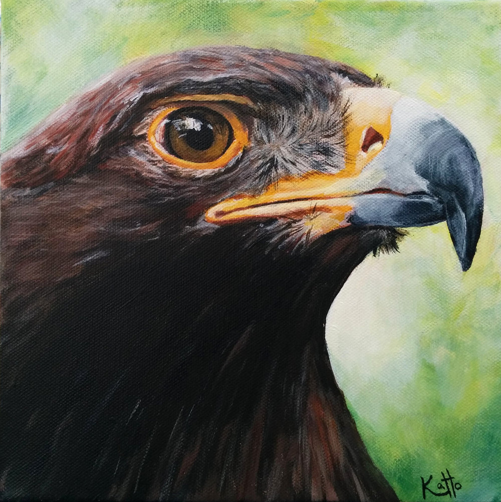 """Golden Eagle"""