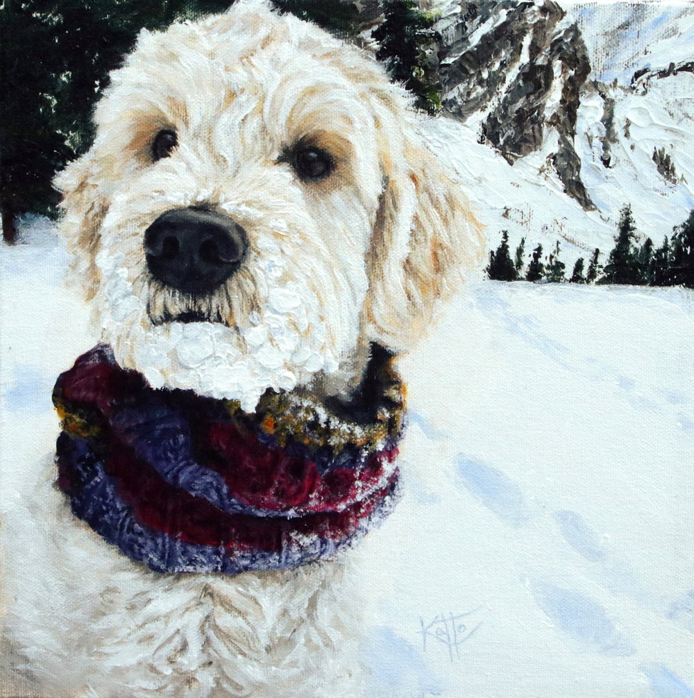 """Jasper (the goldendoodle)"""