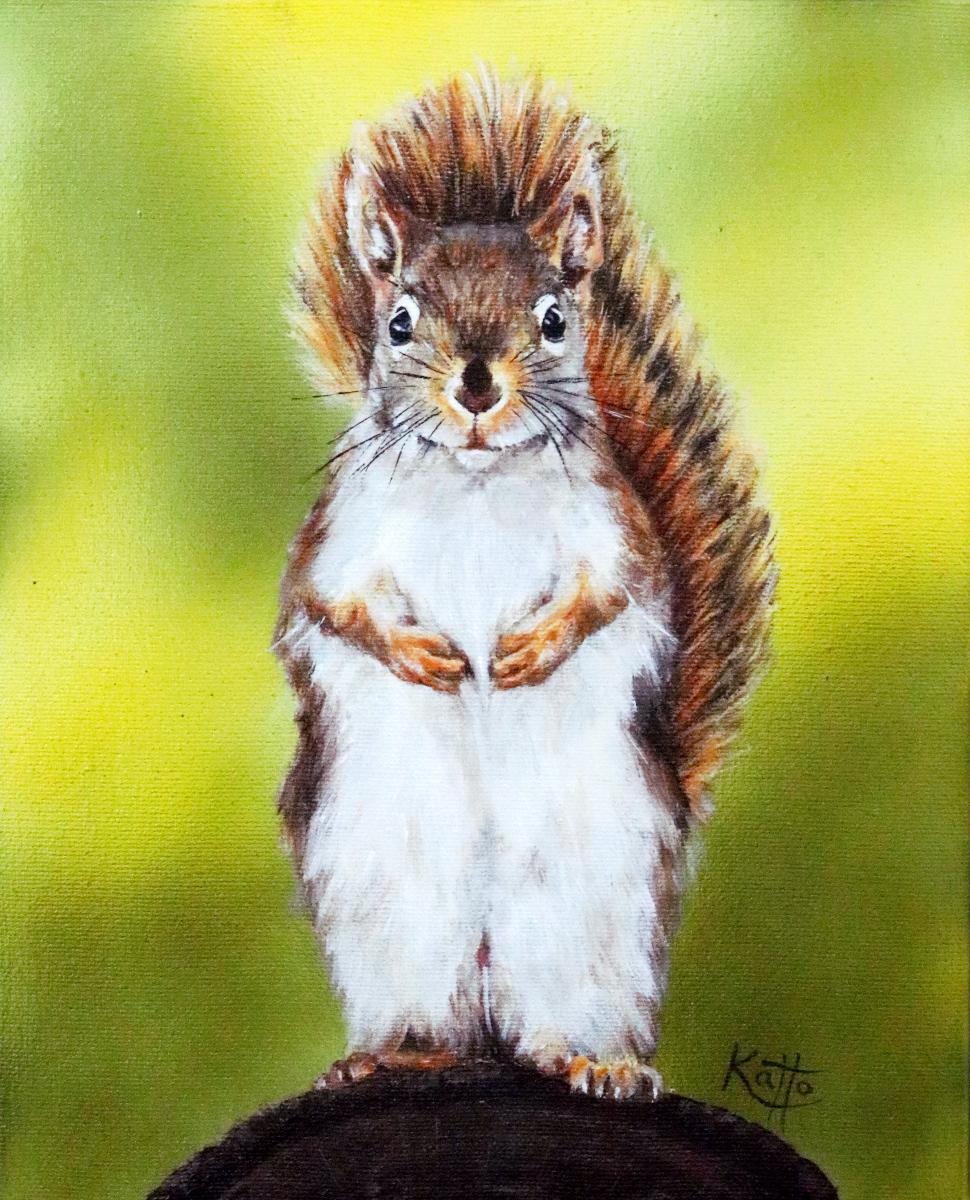 """Hello, my name is Sam. I like nuts."""