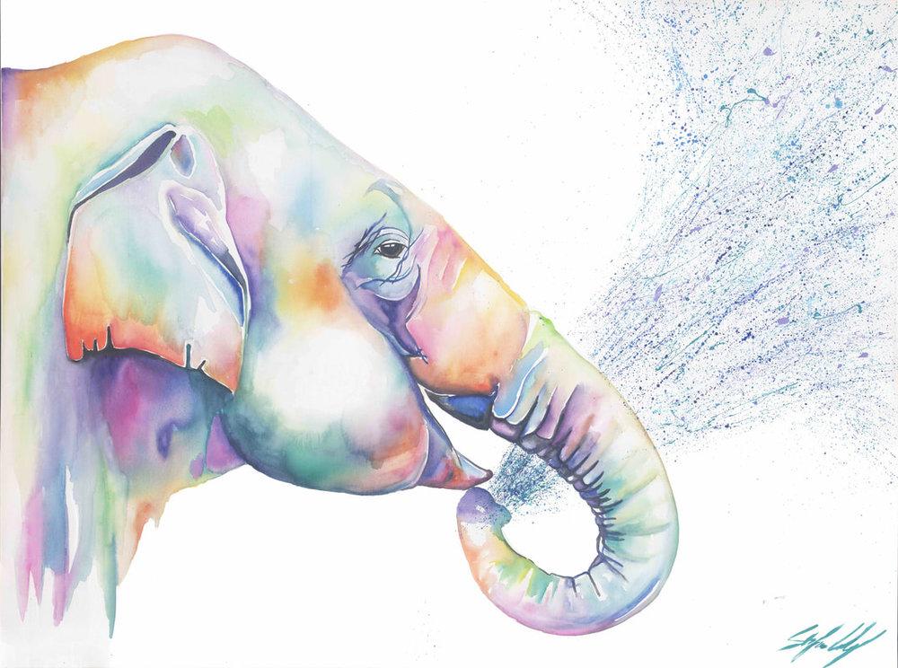 elephant-website-copy_orig.jpg