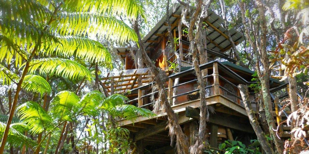 Mahinui-Rainforest-Volcano-Weddings-Wedding-Kilauea-HI-11.jpg