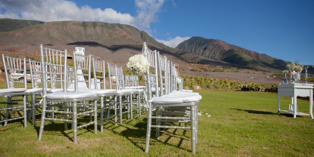Panoramic-Paradise-at-Maui-DragonFruit-Farm-Wedding-Lahaina-HI-03.jpg