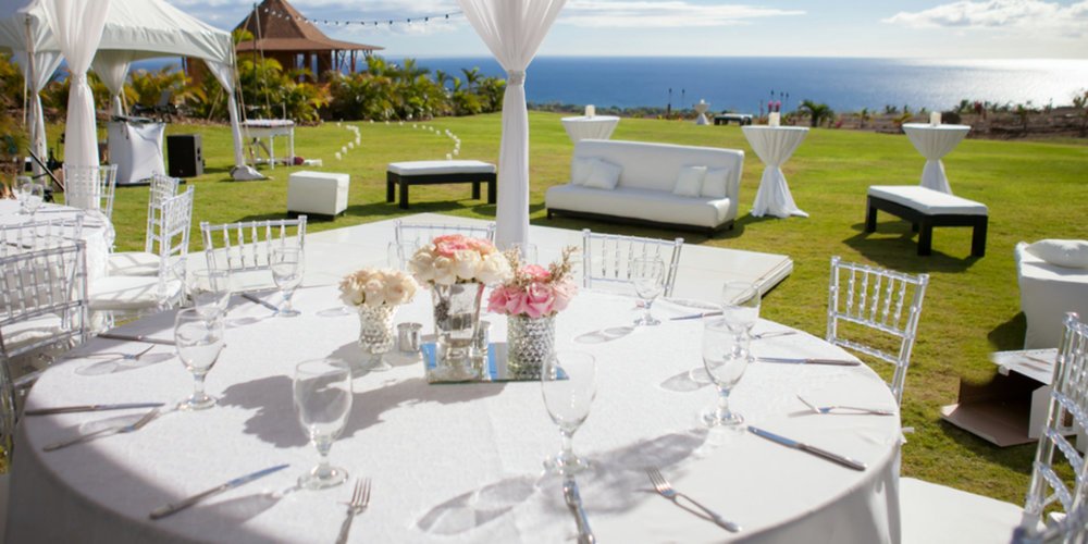 Panoramic-Paradise-at-Maui-DragonFruit-Farm-Wedding-Lahaina-HI-06.jpg