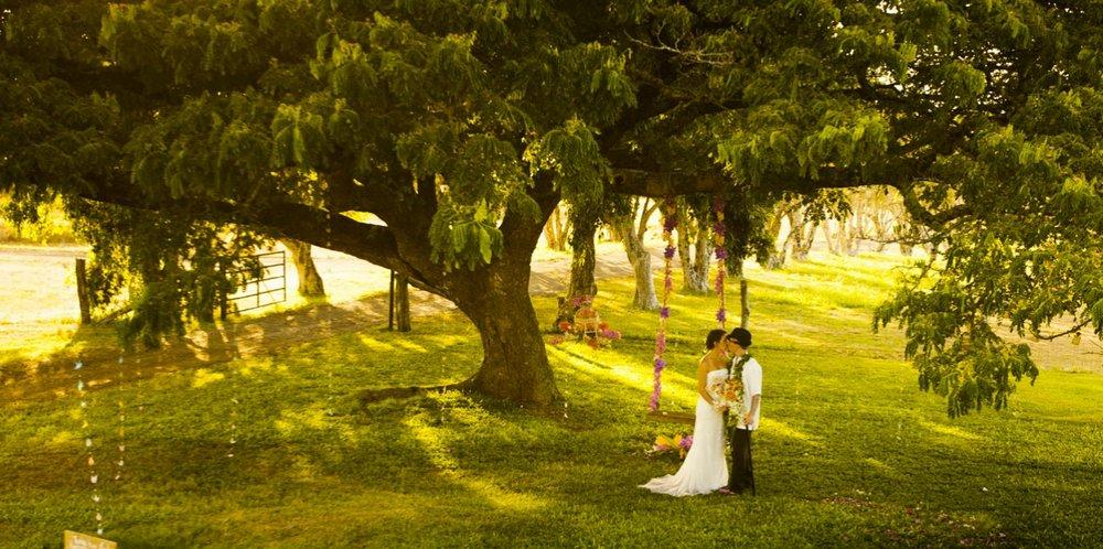 Puakea-Ranch-Wedding-Kona-HI-2.jpg