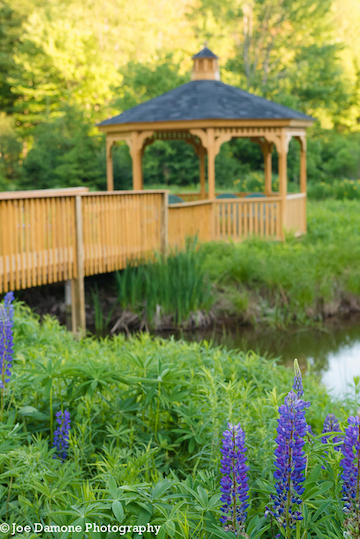 The-Ponds-at-Natural-Gardens-Wedding-East-Meredith-NY-7.jpg