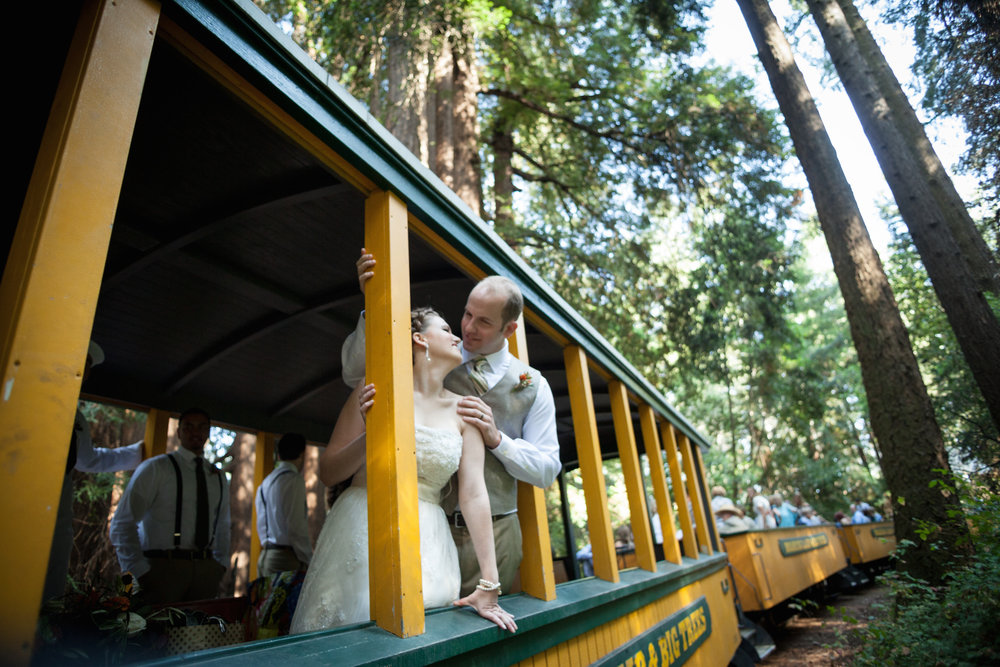 Roaring-Camp-Railroads-Wedding-Felton-CA-10.jpg