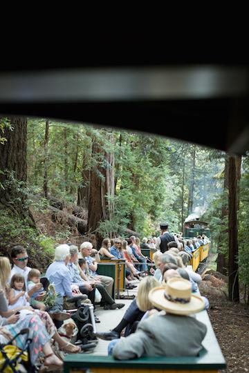 Roaring-Camp-Railroads-Wedding-Felton-CA-121.jpg
