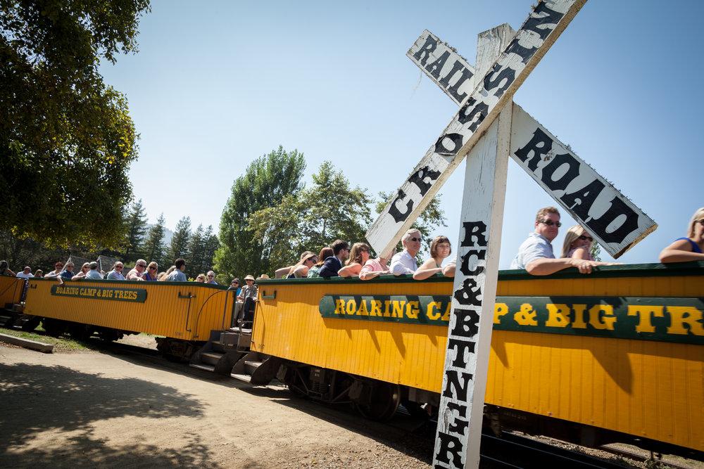Roaring-Camp-Railroads-Wedding-Felton-CA-5.jpg