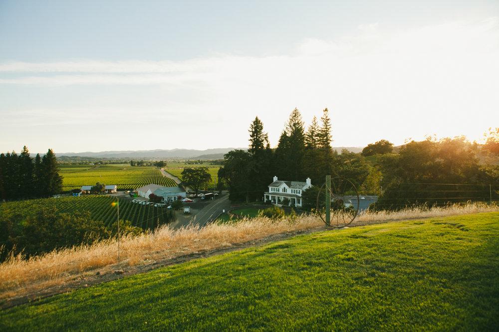 Robert-Young-Estate-Winery-Wedding-Sonoma-CA-18.jpg