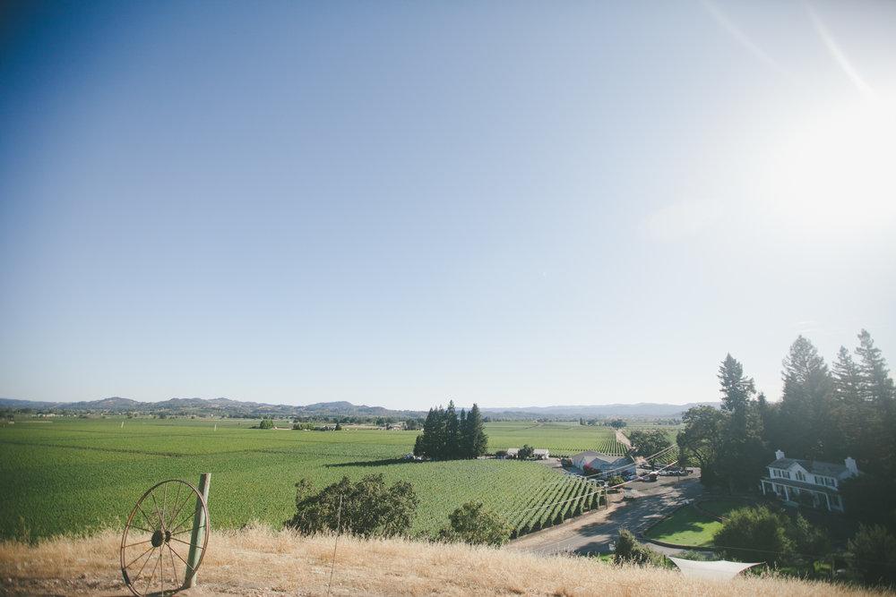 Robert-Young-Estate-Winery-Wedding-Sonoma-CA-7.jpg