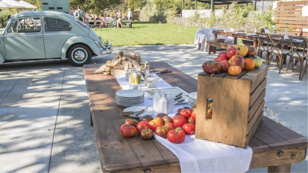 Barlow-Events-Wedding-Sonoma-010.png