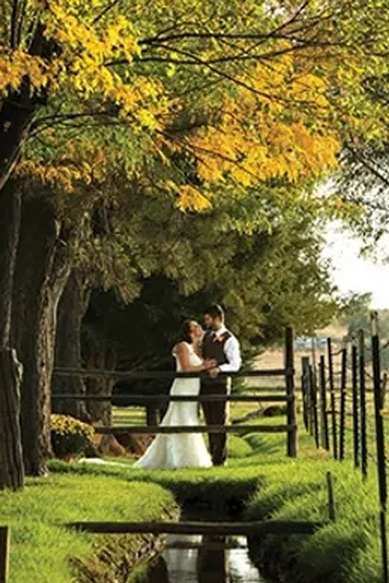 Shupe-Homestead-Wedding-Boulder-CO-6.1494354608.png