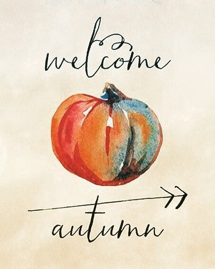 First day of Autumn 🍁🍂 I can't believe how fast this year is going! I look forward to the leaves changing colour. What do you look forward to for the fall season? #autumn #ilovethefallseason