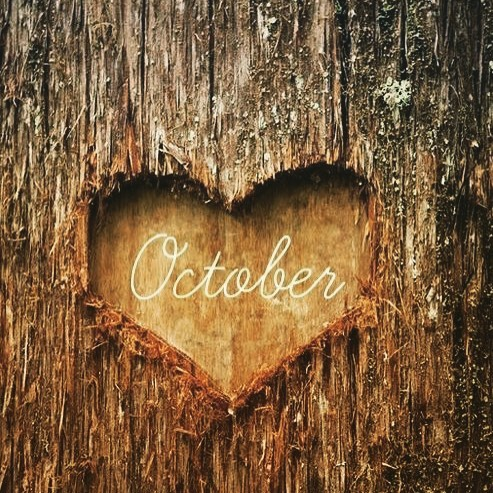 Hello October 🍂🍁🎃🌕 Can't wait to see what October will bring 😁 #fall #october #beautifulseason
