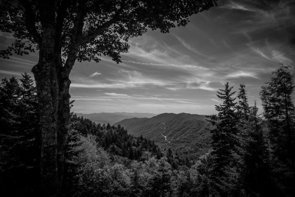 Smokey Mountain National Park, TN