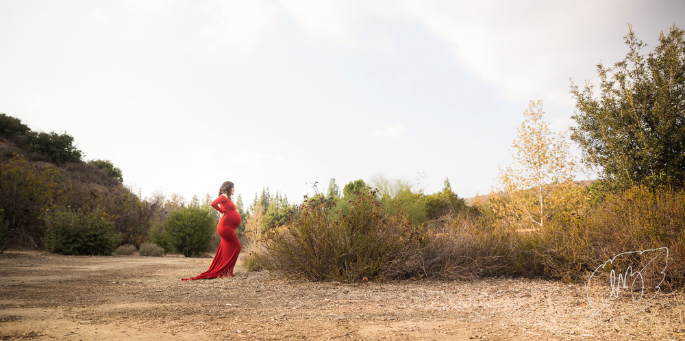 California_Inland_Empire_Maternity_Photographer_05.jpg
