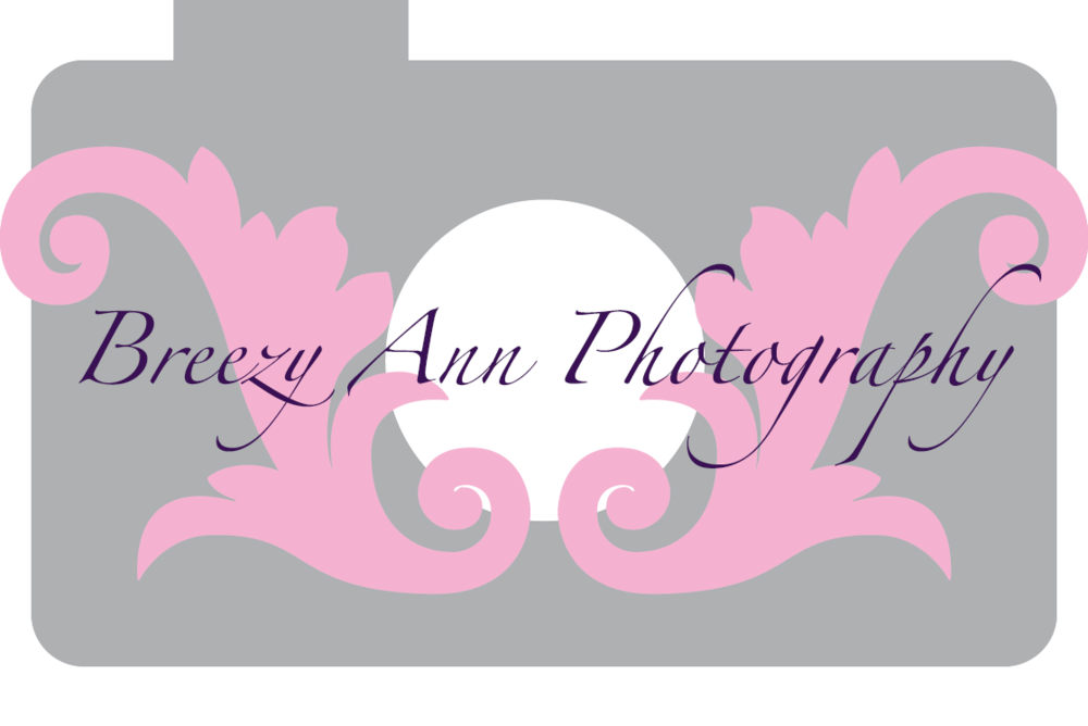 Breezy-Ann-logo-copy.png
