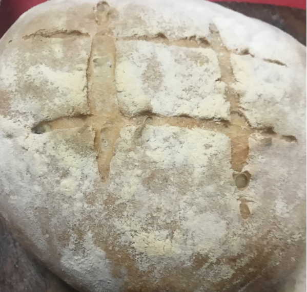 A Wild yeast Sourdough Cob