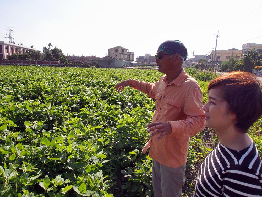 水賊林種植了不少雜糧作物,菜刀大哥帶著我們到處巡田時,分享著各種作物在實行自然農法時會遇上的難題和帶來的益處。
